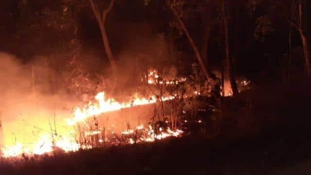 Uttarakhand : इस बार Summer से ज्यादा जंगल Winter में जले,ये हैं मुख्य Reason