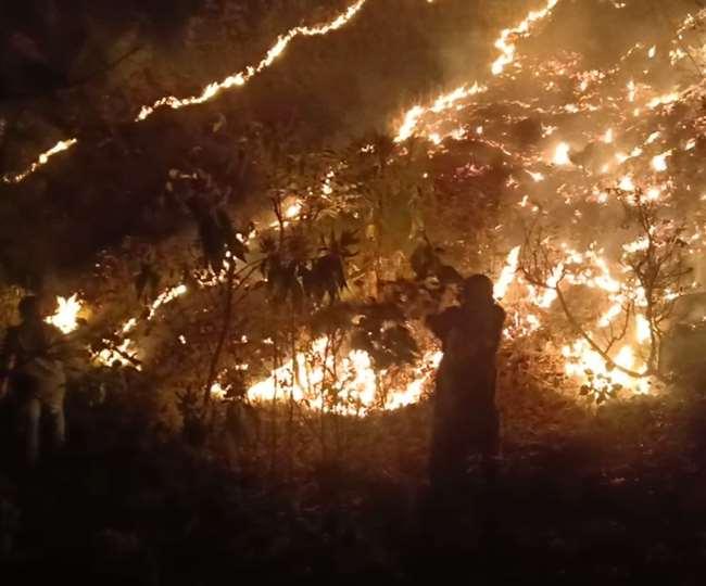 उत्तराखंड : जंगलों की आग बुझाने को गठित होंगे अग्नि सुरक्षा दस्ते उत्तराखंड में