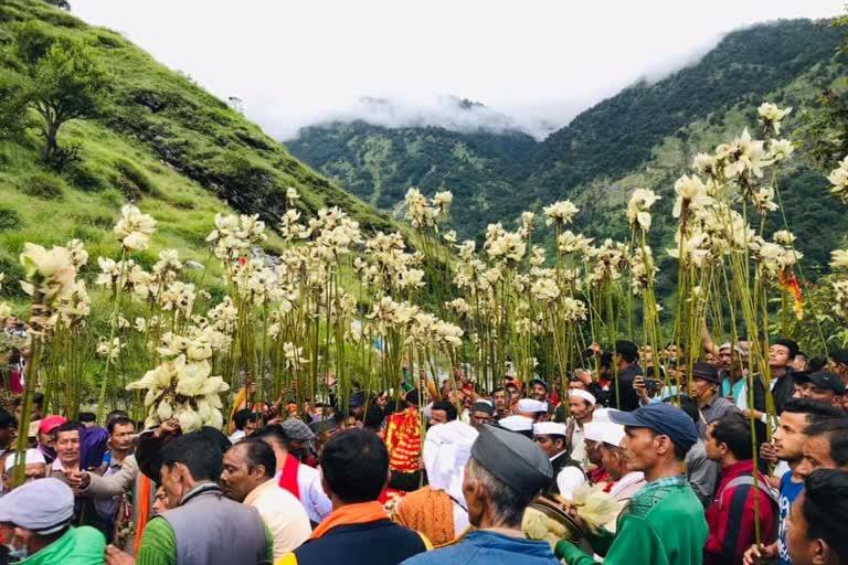 उत्तराखंड पिथौरागढ़ न्यूज़ : यहां खास तरीके से की जाती है मां नंदा की पूजा, 13 हजार फीट की ऊंचाई वाले ब्रह्मकमल चढ़ते है